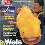 blinker magazine germany stingray article
