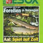 esoc magazine giant freshwater stingray