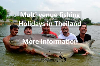 multi venue fishing holidays in thailand