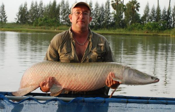 Arapaima gigas captured from IT Monster Predator Lake in Ratchaburi by Brendan