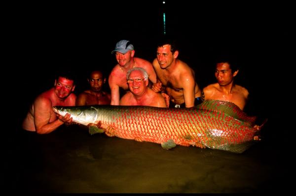 Nighttime Arapaima gigas estimated 80kg+ from IT Monster predator Lake in Ratchaburi
