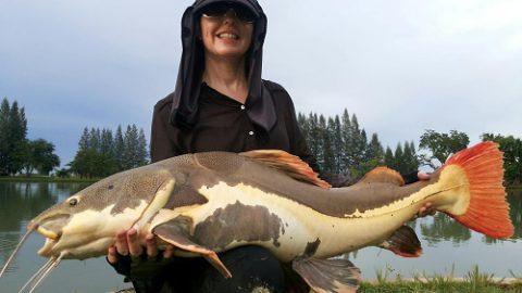 Lure fishing IT Lake Thailand