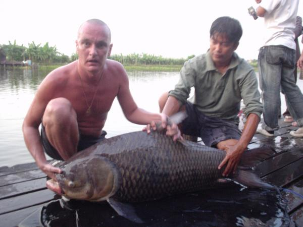Giant siamese carp caught from Bungsamlan Lake Bangkok 60kg+