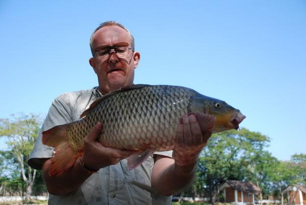 Nice 14lb Common Carp caught by Brendan at Dream Lake