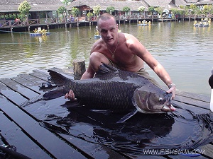 50 Kg Giant Siamese Carp Caught fishing in Bangkok Thailand