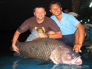 50 kg Giant Siamese Carp captured fishing in Bangkok Thailand