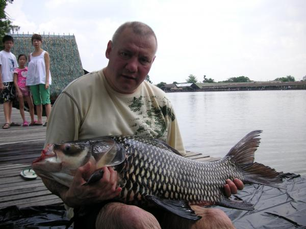 Giant Siamese carp caught from Bungsamlan Lake in Bangkok.