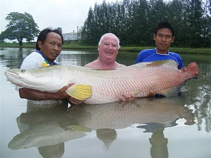 Amazon predators IT Lake Monsters Thailand