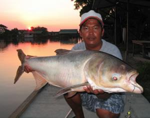 Fishing Now Nam Lake