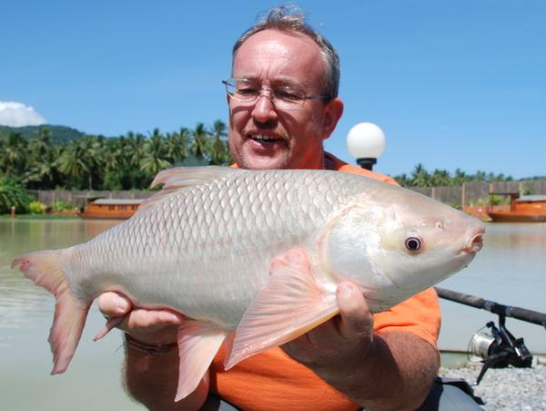 Beautiful Rohu Carp caught by Bangkok angler Brendan from Topcats in Koh Samui.