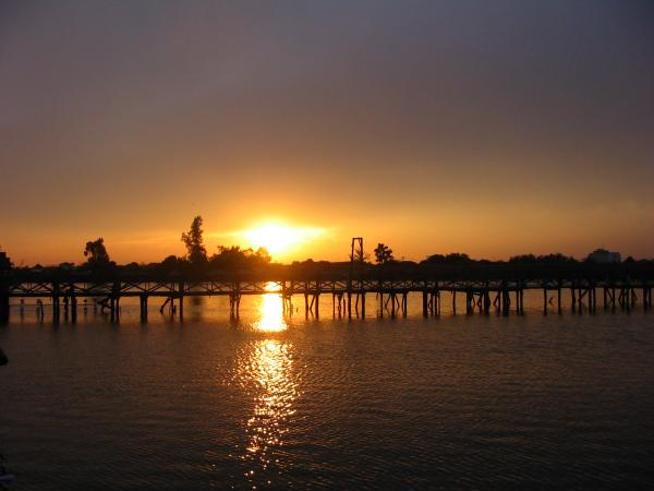 Bungsamlan Lake in Bangkok is home to some of the largest freshwater fish on the planet.