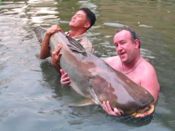 Giant Mekong Catfish caught from Bungsamlan Lake in Bangkok caught by Brendan estimated 80-90kg.