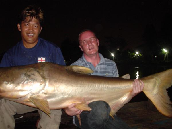 Giant Mekong Catfish caught from Bungsamlan Lake in Bangkok 49kg.