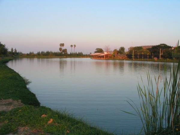 IT Monster predator Lake in Ratchaburi.