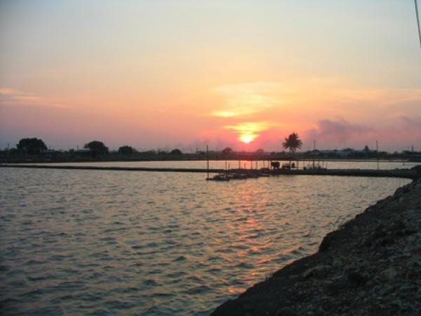 The sun sets over the Barramundi ponds at Ban Pakong.
